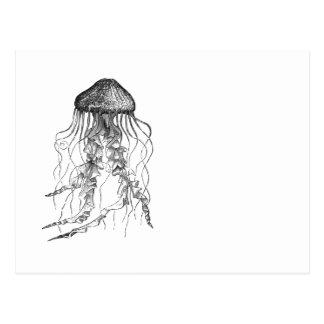 Jellyfish Black and White Pencil Sketch Design Postcard
