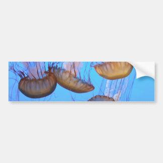 Jellyfish Bumper Sticker