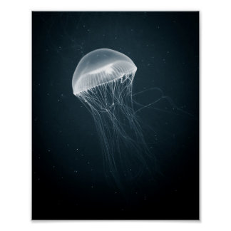 Jellyfish Glow | Poster