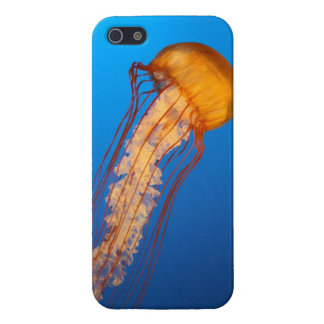 Jellyfish iPhone 5 Case