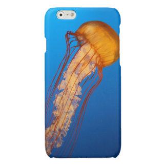 Jellyfish iPhone 6 Case iPhone 6 Plus Case