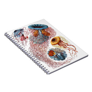 Jellyfish Journal Notebook