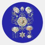Jellyfish Round Stickers