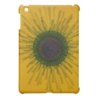 Jellyfish Speck Hard Shell Fabric iPad Case