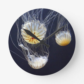 Jellyfish Wallclocks