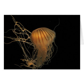Jellyfish Waltz Greeting Card
