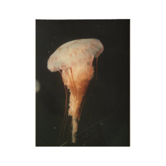 Jellyfish wood poster