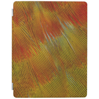 Jenday Conure Feather Abstract iPad Cover