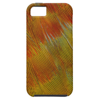 Jenday Conure Feather Abstract iPhone 5 Case