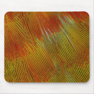 Jenday Conure Feather Abstract Mouse Mat