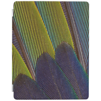 Jenday Conure Feather Detail iPad Cover