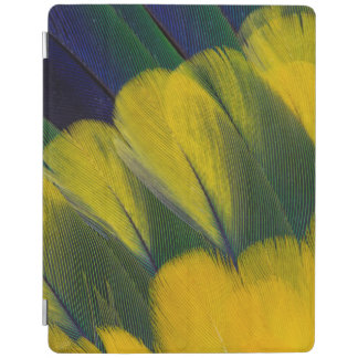 Jenday Conure Feathers Close-Up iPad Cover