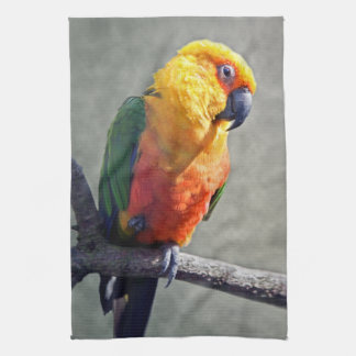 Jenday Conure Kitchen Towel