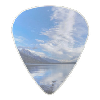 Jenny in Morning Acetal Guitar Pick