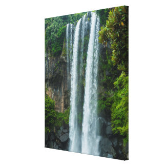 Jeongbang waterfall, South Korea Canvas Print