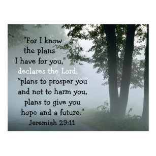 Jeremiah 29:11 For I know the plans I have for you Postcard