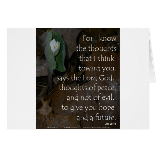 Jeremiah 29:11 hope for the future card