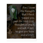 Jeremiah 29:11 hope for the future postcard