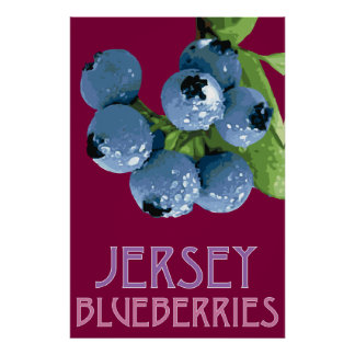 Jersey_Blueberries Poster