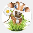 Jersey cow in grass classic round sticker