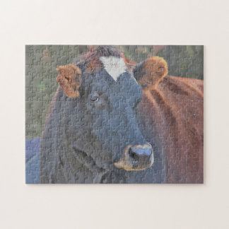 Jersey Cow Jigsaw Puzzle