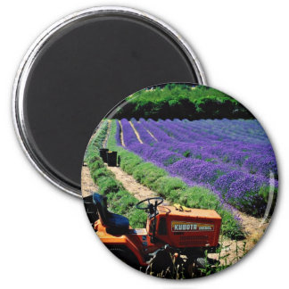Jersey lavender farm, Jersey Channel Islands, Engl Magnet