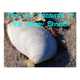 Jersey Shore Treasure Postcard