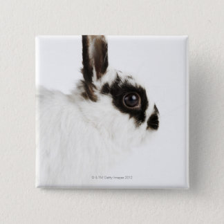 Jersey Wooly Rabbit 15 Cm Square Badge