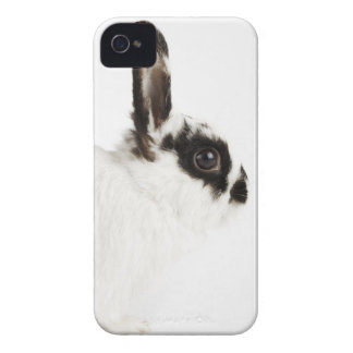 Jersey Wooly Rabbit Case-Mate iPhone 4 Case