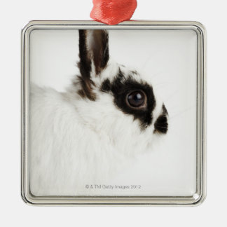 Jersey Wooly Rabbit Christmas Ornament