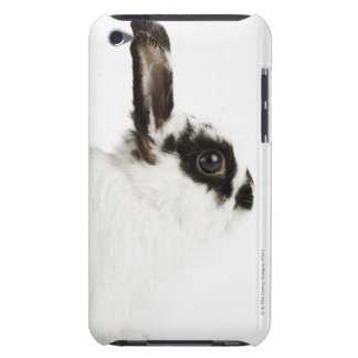 Jersey Wooly Rabbit iPod Case-Mate Case