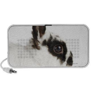 Jersey Wooly Rabbit Laptop Speakers