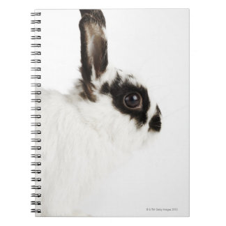Jersey Wooly Rabbit Notebook