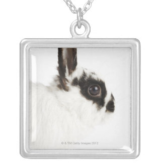 Jersey Wooly Rabbit Silver Plated Necklace