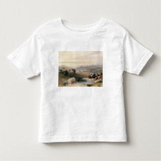Jerusalem, April 1839, plate 22 from Volume I of ' Toddler T-Shirt