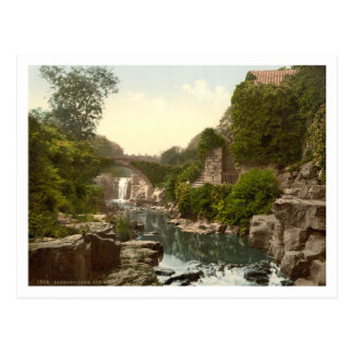 Jesmond Dene II, Newcastle-upon-Tyne, England Postcard