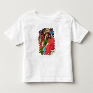 Jesus Among the Doctors Toddler T-Shirt