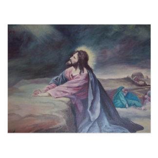 Jesus Praying at Gethsemane Post Card