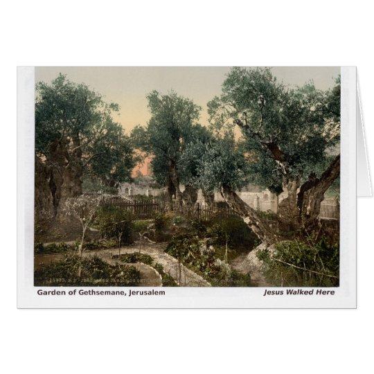 Jesus Walked Here: Garden of Gethsemane Card