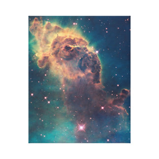 Jet in Carina Canvas Print