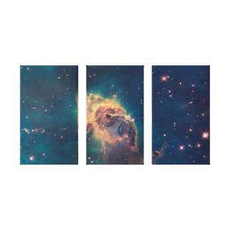 Jet in Carina Wrapped Canvas Canvas Print
