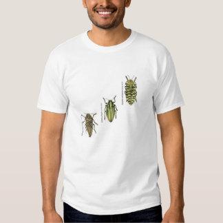 Jewel beetle t-shirt