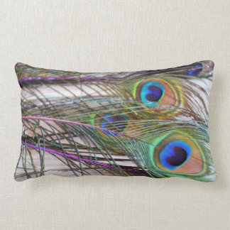 Jewel-Tone Peacock Feathers Pillow Chic & Trendy