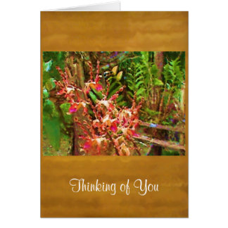 Jeweled Dendrobiums Thinking of You Blank Cards