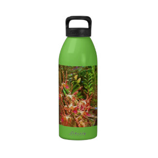 Jeweled Dendrobiums Water Bottle