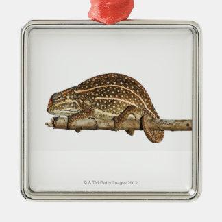 Jewelled chameleon, Campan's chameleon Christmas Ornament