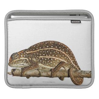 Jewelled chameleon, Campan's chameleon iPad Sleeve