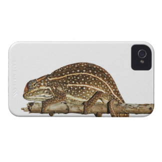 Jewelled chameleon, Campan's chameleon iPhone 4 Covers