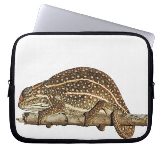 Jewelled chameleon, Campan's chameleon Laptop Sleeve