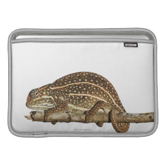 Jewelled chameleon, Campan's chameleon MacBook Sleeve